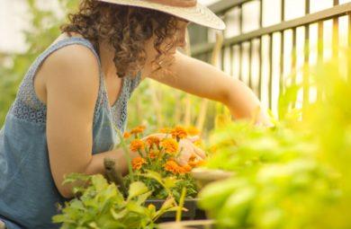 jardinage de printemps