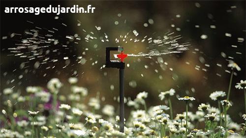 microasperseur gardena